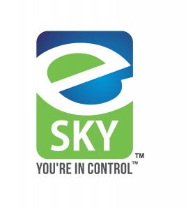 e-SKY Solutions logo