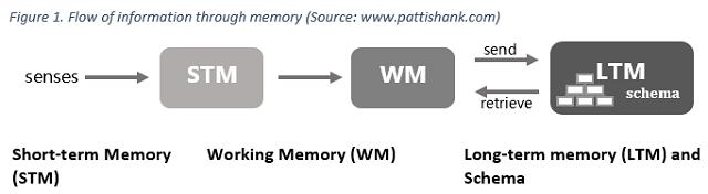 figure-1-memory-flow