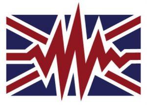 British Voice Diva LLC logo
