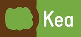 BitKea Technologies logo